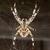 Spiderinnet